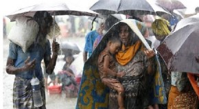 Nearly 40,000 Rohingya fled escalating Myanmar fighting: UN sources
