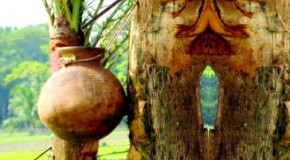 আবহমান গ্রামবাংলার বৈচিত্র্যপূর্ণ উৎসবে গ্রামীণ জনতার প্রাণোচ্ছলতায় খেজুর রসের উপাখ্যান